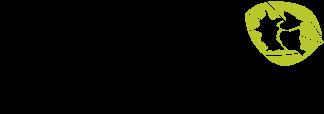 Fundação Chapadão