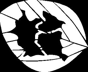 Folha Logo Fundação Chapadão